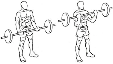 ez-bar barbell curl