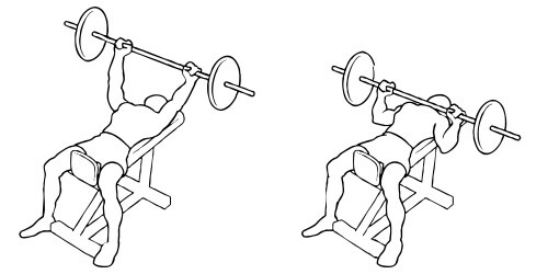 Incline Barbell Bench Press