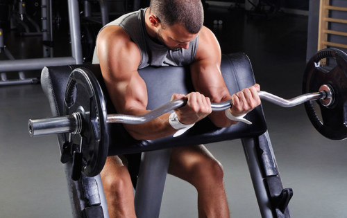 10 Laws Of Biceps Training