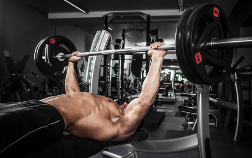 12 Laws Of Elite Chest Training