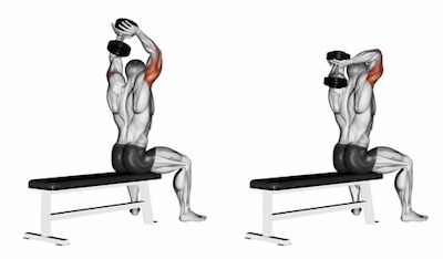 Seated dumbbell overhead tricep extension